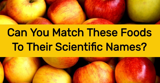 Can You Match These Foods To Their Scientific Names?