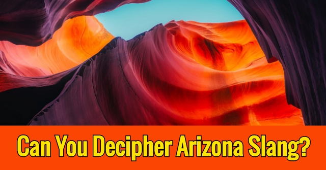 Can You Decipher Arizona Slang?