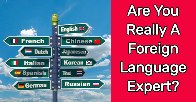 Are You Really A Foreign Language Expert?