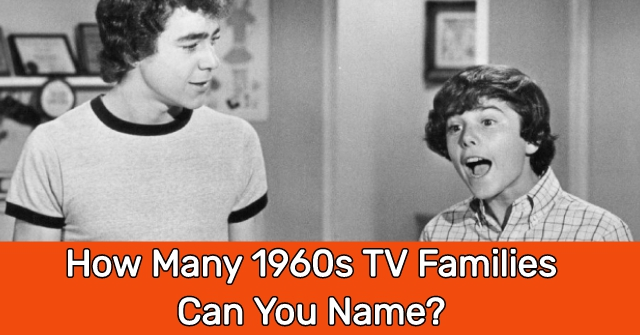 How Many 1960s TV Families Can You Name?