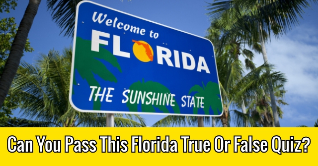 Can You Pass This Florida True Or False Quiz?