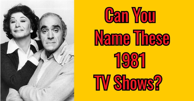 Can You Name These 1981 TV Shows?