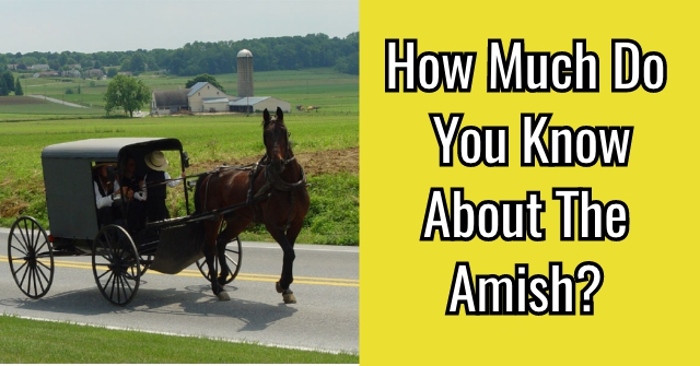 How Much Do You Know About Amish?