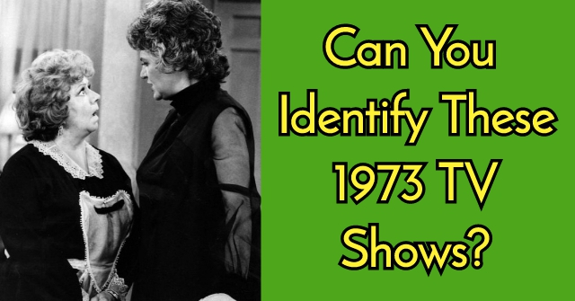 Can You Identify These 1973 TV Shows?