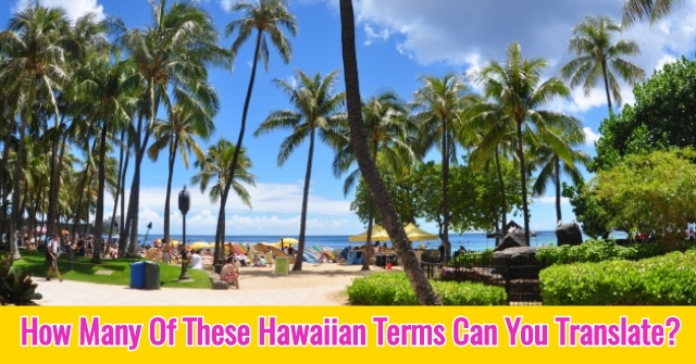 How Many Of These Hawaiian Terms Can You Translate?