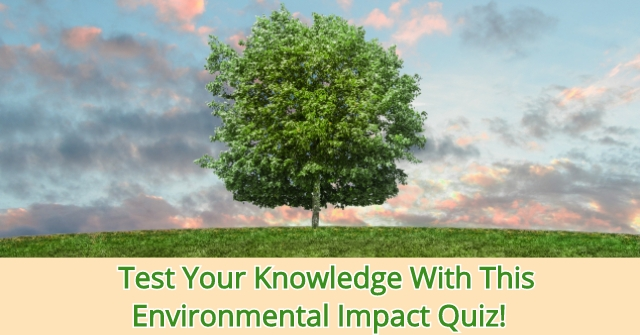 Test Your Knowledge With This Environmental Impact Quiz!