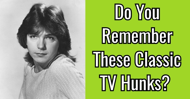 Do You Remember These Classic TV Hunks?