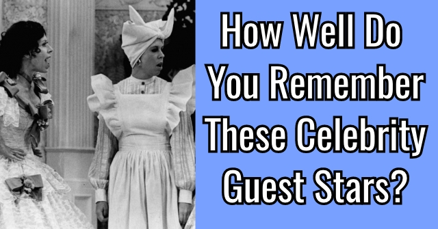 How Well Do You Remember These Celebrity Guest Stars?