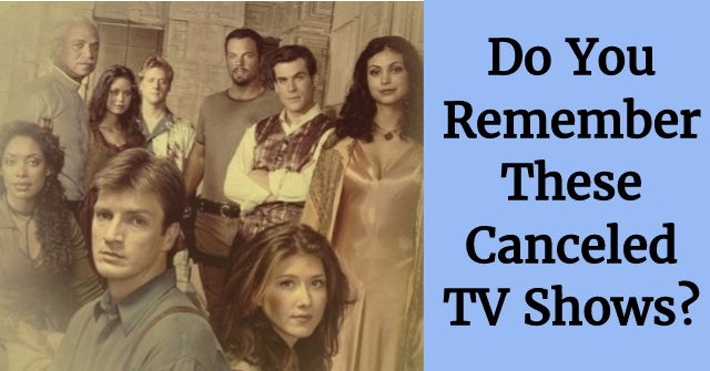 Do You Remember These Canceled TV Shows?