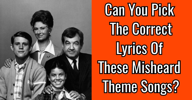 Can You Pick The Correct Lyrics Of These Misheard Theme Songs?