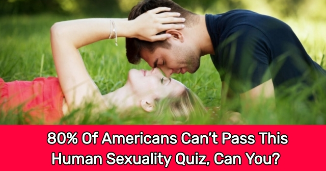 80% Of Americans Can't Pass This Human Sexuality Quiz, Can You?