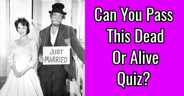 Can You Pass This Dead Or Alive Quiz?