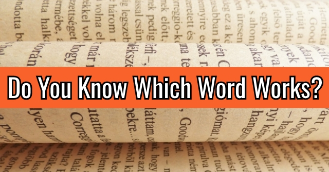 Do You Know Which Word Works?