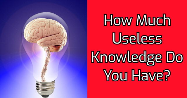 How Much Useless Knowledge Do You Have?