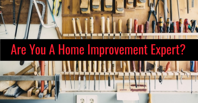Are You A Home Improvement Expert?