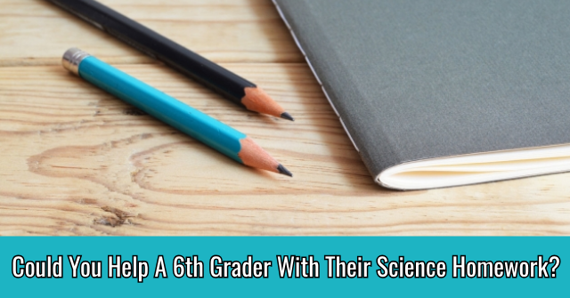 Could You Help A 6th Grader With Their Science Homework?