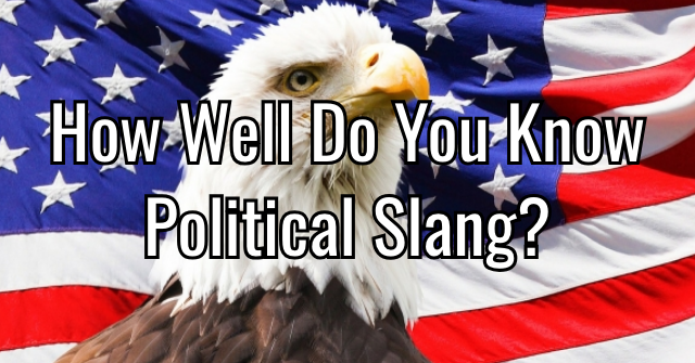 How Well Do You Know Political Slang?
