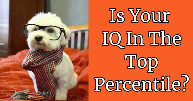 Is Your IQ In The Top Percentile?