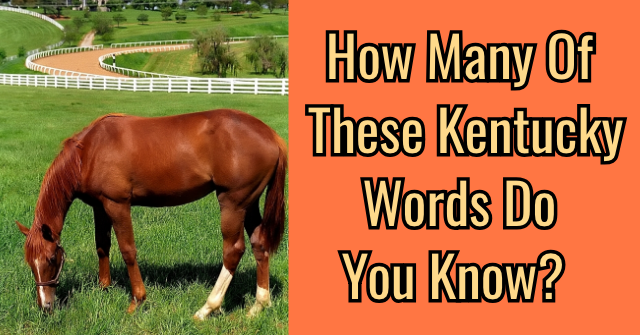 How Many Of These Kentucky Words Do You Know?