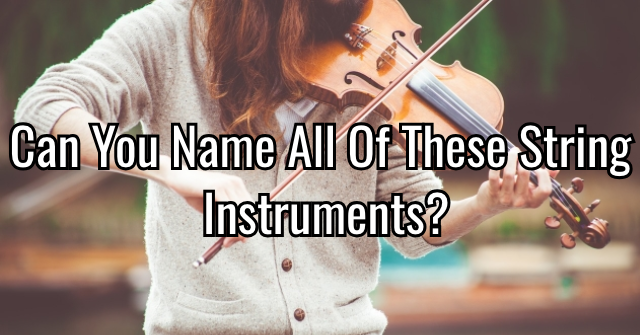 Can You Name All Of These String Instruments?