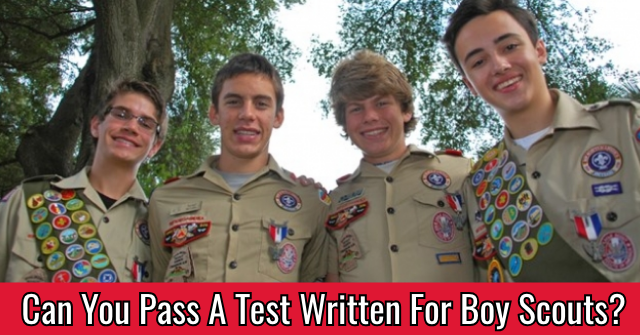 Can You Pass A Test Written For Boy Scouts?