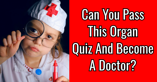 Can You Pass This Organ Quiz And Become A Doctor?