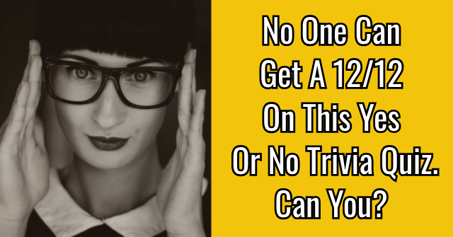 No One Can Get A 12/12 On This Yes Or No Trivia Quiz. Can You?