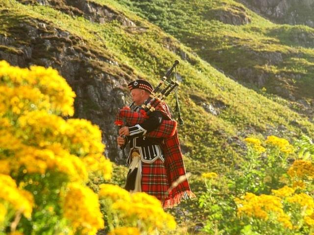 Do You Know Scottish-English Slang? | QuizPug