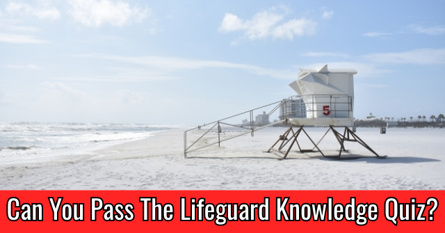 Can You Pass The Lifeguard Knowledge Quiz?