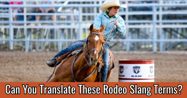 Can You Translate These Rodeo Slang Terms?