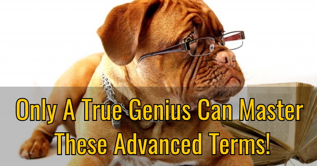 Only A True Genius Can Master These Advanced Terms!