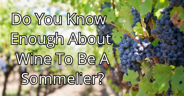 Do You Know Enough About Wine To Be A Sommelier?