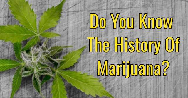 Do You Know The History Of Marijuana?