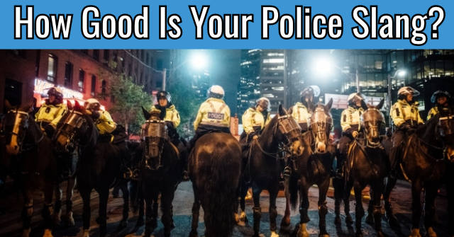 How Good Is Your Police Slang?